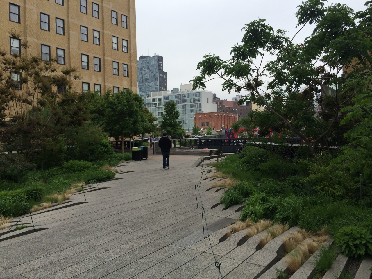 The High Line, how New York repurposed an old elevated railway to become a open air gallery and one of the greatest walks inAmerica